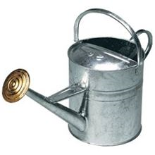 2 Gallon Galvanized Watering Can CJ0760